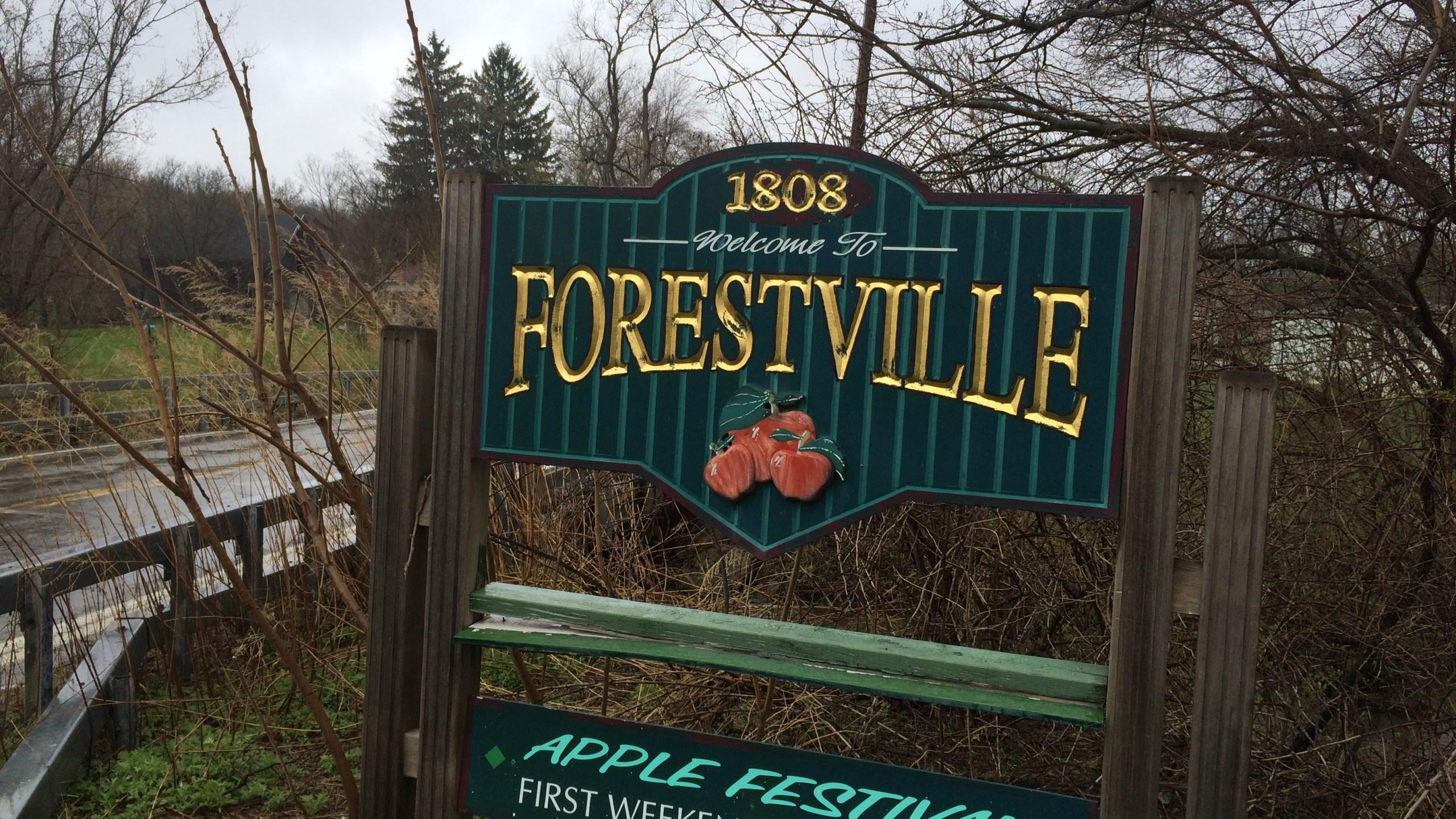 Forestville_119874