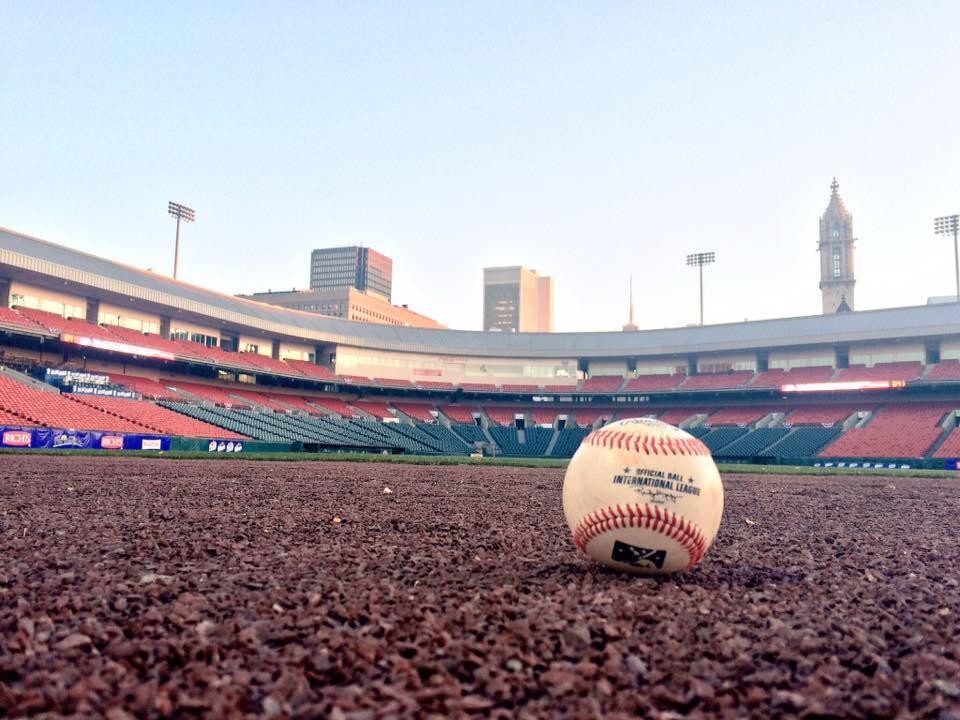 bisons baseball_258100