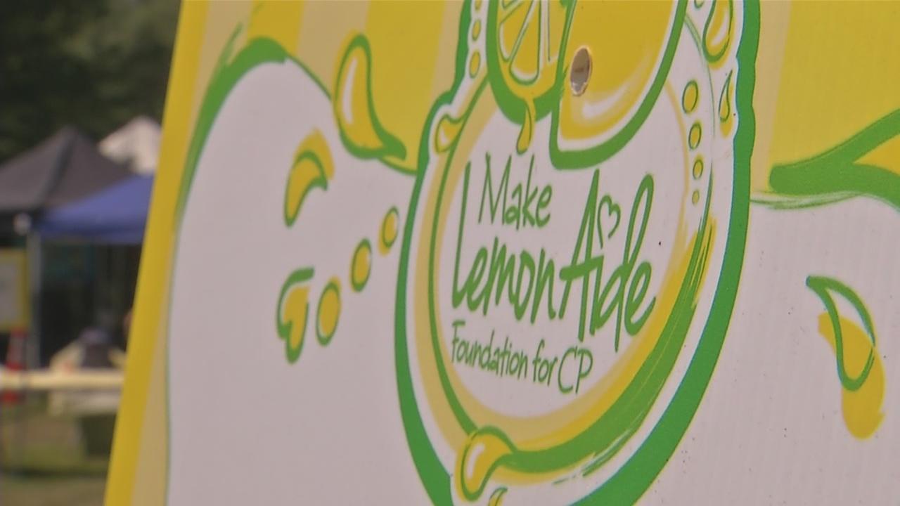 make lemon aide_281209