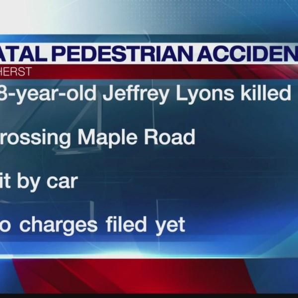 Pedestrian struck at Amherst intersection