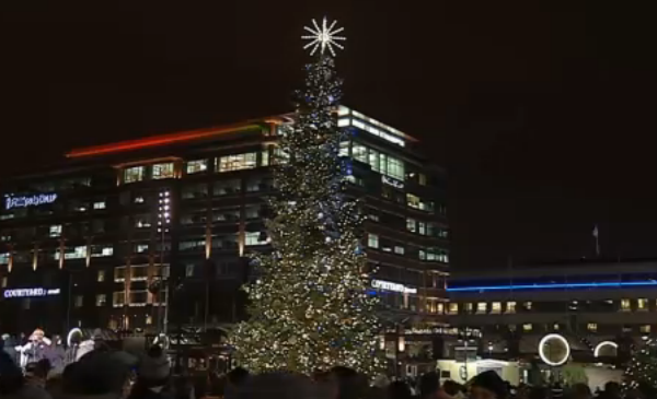 christmas-tree_495255