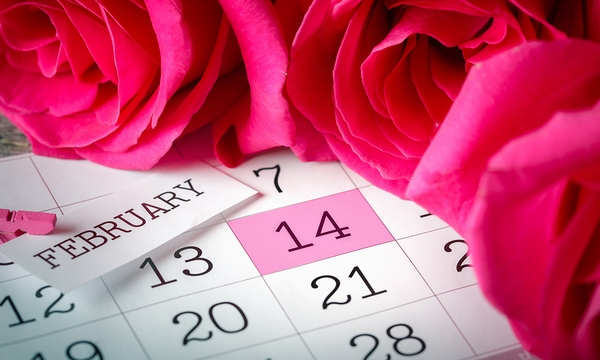 valentines-day_1516743115605_335680_ver1-0_32529009_ver1-0_640_360_528723