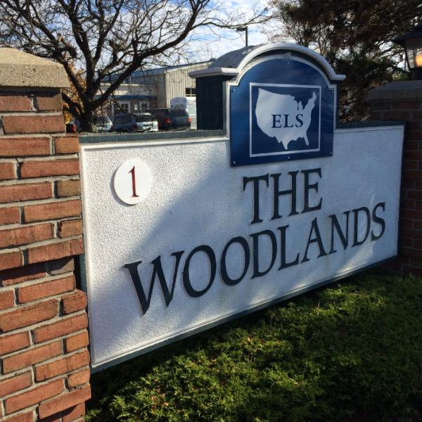 TheWoodlands_549005