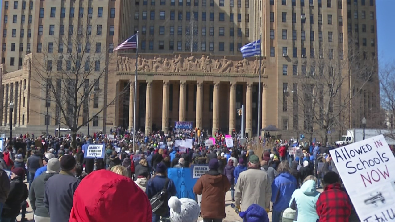 Buffalo City Hall Protest March for our Lives