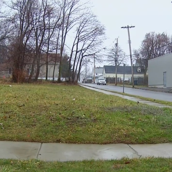 Buffalo neighbors negotiating with city to take control of vacant lots