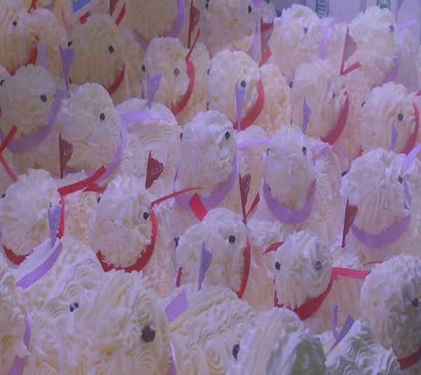 butter lambs_1522586820073.JPG.jpg