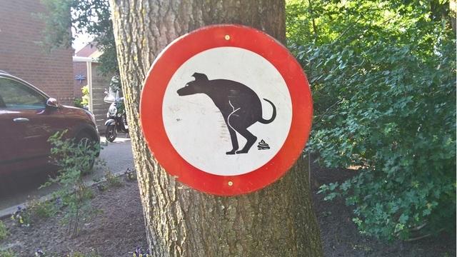 Anti-Dog_poop_sign_in_a_garden,_Oude_Pekela__OP_2018_CP__01_1535229369675_53086220_ver1.0_640_360 (1)_1535241803368.jpg.jpg