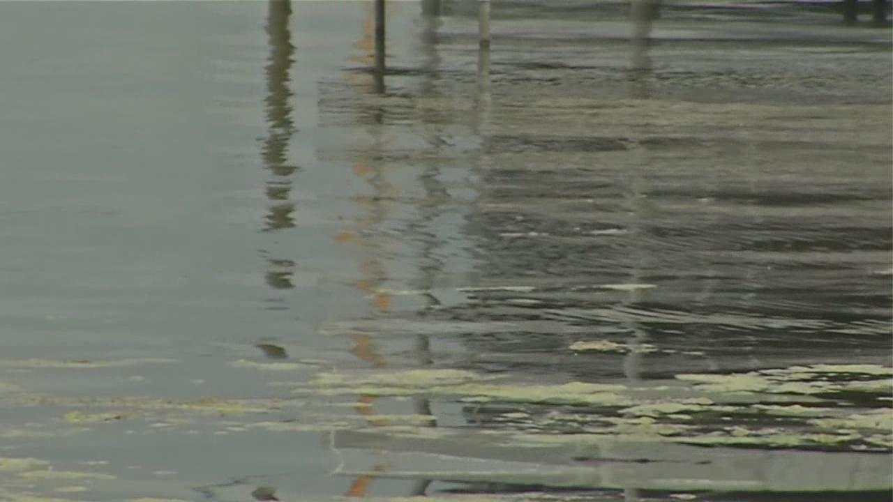 Chautauqua Institution files suit after herbicide testing in Chautauqua Lake
