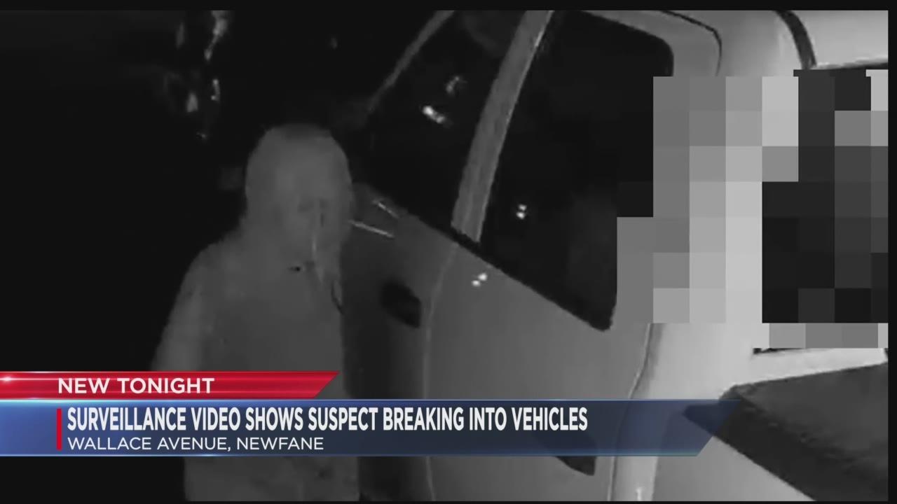 Newfane vehicle theft
