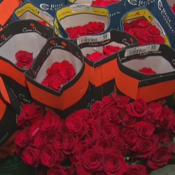 Buffalo's Best Local Flower Shop