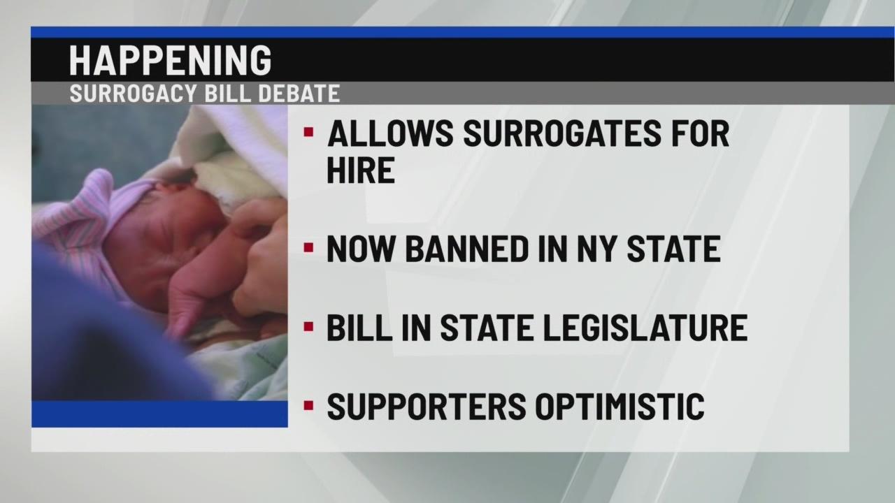 Surrogacy bill debate