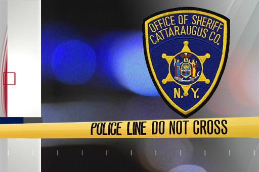police cattaraugus county_1551114828547.jpg.jpg