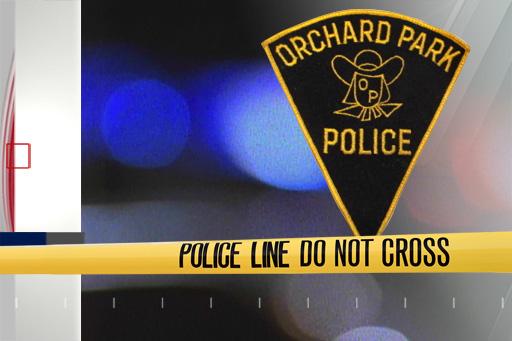 police orchard park_1554405866323.jpg.jpg