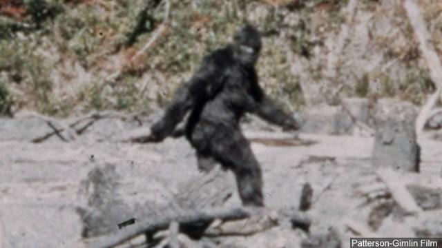 bigfoot sighting_1557441907546.jpg_86958001_ver1.0_640_360_1557451588141.jpg.jpg