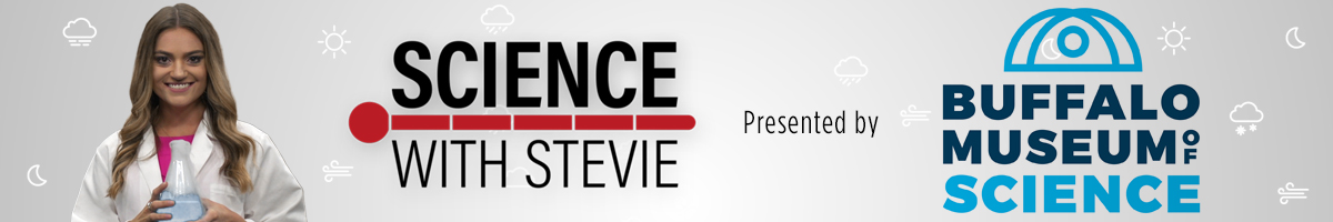 Science With Stevie presented by Buffalo Museum of Science