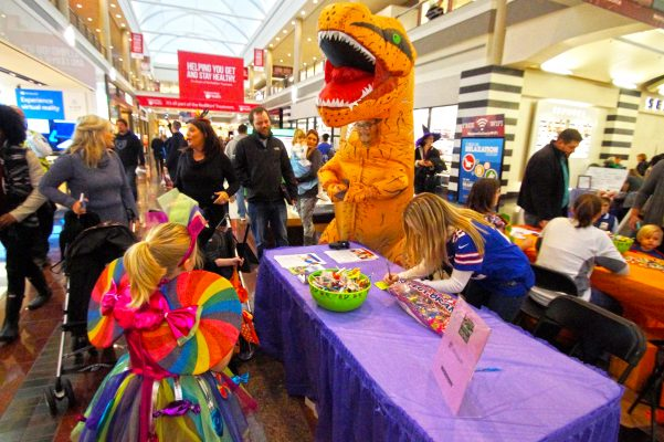 25th Annual Galleria Of Treats News 4 Buffalo