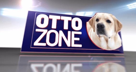 2020 Halloween Pet Buffalo Ny Otto Zone – 2020 Buffalo Bills season | News 4 Buffalo